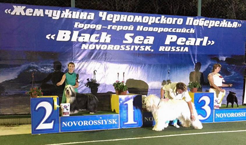"CACIB Novorossiysk ""Black Sea Perl"""
