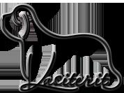 kasiterit-logo-178x133