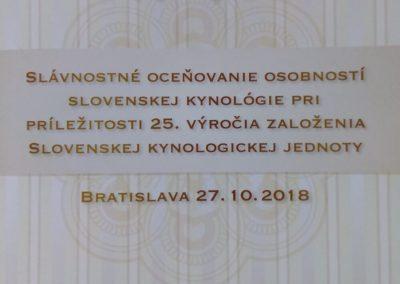 ocenenia-skj-2018-bbck