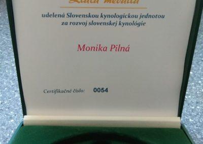 zlata-medaila-ocenenie-skj